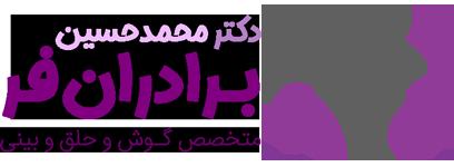 دکتر محمد حسین برادران فر